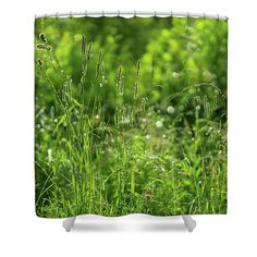 Green Idyll Shower Curtain by Svetlana Iso.     Green idyll by Svetlana Iso     ...How green, green is the grass   After a morning of raining   #SvetlanaIso #SvetlanaIsoFineArtPhotography #Photography #ArtForHome #InteriorDesign #FineArtPrints #Home #Gift #Relax #FengShui #Color  #Green #Shower