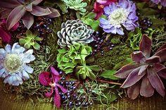 eco-friendly tablescape w succulents Gum Paste, Wedding Decorations, Wedding Ideas, Tablescapes, Fondant, Succulents, Centerpieces, Eco Friendly, Organic
