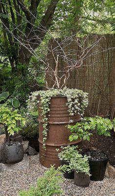 Glädjekällans Trädgårdsblogg: Fler höjdpunkter när det gäller trädgårdsbesök…