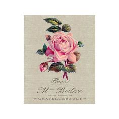 Linen Rose - Flower Artwork - Floral Art Print - 8x10 Print - French Country Style - Cottage Chic Style Decor