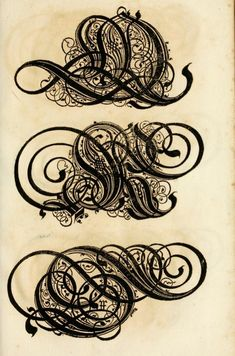 'The Proper Art of Writing: A Compilation of All Sorts of Capital or Initial Letters of German, Latin and Italian Fonts from Different Masters of the Noble Art of Writing.'