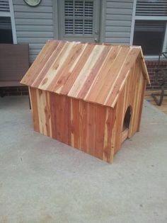 Cedar Lumber Custom Cut Sawmill