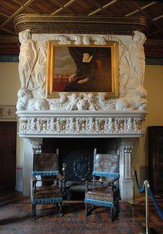 Château de Chenonceau -Fireplace in Diane de Poitier's bedroom Mantle Art, Marble Fireplace Mantel, Marble Fireplaces, Fireplace Surrounds, Chambord Castle, Cheverny, French Castles, Poitiers, Fireplace Accessories