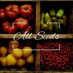 All Seeds