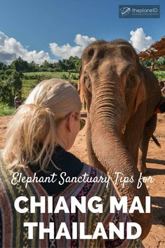 How to Choose an Ethical Elephant Sanctuary in Chiang Mai, Thailand - Tips for Participating in Sustainable and Responsible Animal Tourism.   Blog by The Planet D: Canada's Adventure Travel Couple