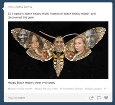 """So I typed in 'black history moth' instead of 'black history month' and discovered this gem"" 