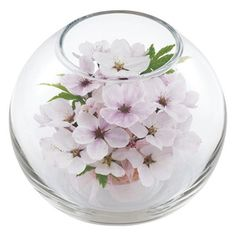 可憐に美しく咲く花の姿を、数年にわたって楽しめます。【<華工房> エターナルフラワー桜】