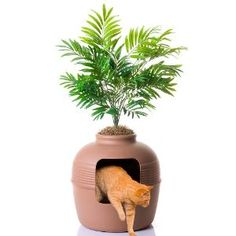 Planter that hides the litter box. Ingenius idea!