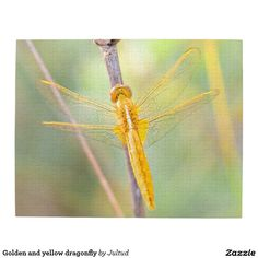 Golden and yellow dragonfly jigsaw puzzle. #entertainment #puzzles #dragonflies #games #photograph