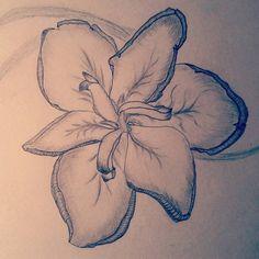 fleur-de-lis by SandOfSadness.deviantart.com on @DeviantArt