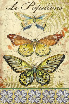 Vintage Wings-Le Papillons Painting