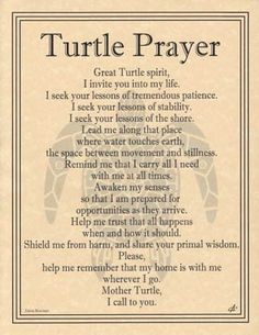This beautiful parchment poster mingles the tripal artwork of Eliot Alexander with the poetic prayer of Travis Bowman to provide you with a prayer to the Great Turtle Spirit. Teaching virtues such as