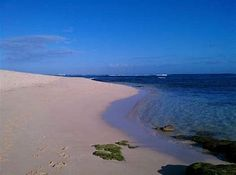 perus northern beaches died - HD2048×1536