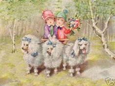 standard poodles antique