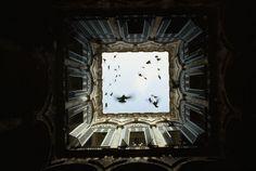25fotos dos arquivos daNational Geographic nunca antes publicadas