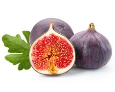 Purple Smyrna Fig Tree – Four Winds Growers