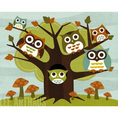 84 Owls Living in Tree