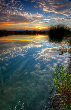 ~~Sunrise at the Oasis ~ dawn at the lake, Chandler, Arizona by Sue Cullumber~~