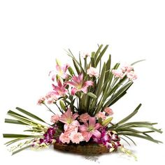 This product includes a basket arrangement of 20 mix exotic flowers through which you can express a feeling of extra love , care & affection. To know more click on the image.