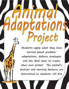 What are some advantages and disadvantages of animal adaptations?