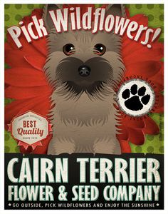 Dogs and Flowers Art Print  Cairn Terrier Art by DogsIncorporated, $26.00