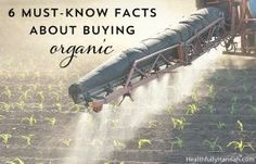 6 Must-Know Facts About Buying Organic