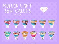 Muller light syns for slimming world | Everything ...