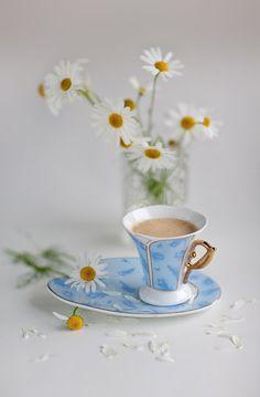 pavel fadeev – Google+ Coffee Vs Tea, Coffee Is Life, Coffee Love, Coffee Art, Coffee Drinks, Coffee Cups, Tea Cups, Good Morning Tea, Morning Coffee
