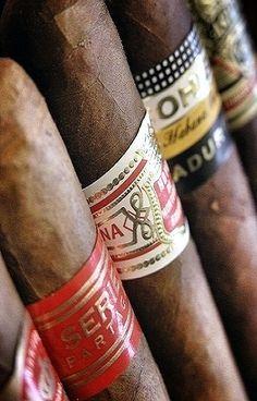 Cuban cigars Tolle Geschenke mit Zigarren gibt es bei http://www.dona-glassy.de/Geschenke-mit-Zigarre:::64.html