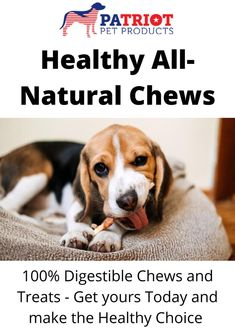 Looking for healthy Chews and Treats for your Dog. Patriot Pet has the Best All-Natural, 1 ingredient chews. Chews and Treats made with your dog's health in mind. Natural Dog Treats, Dog Chews, Healthy Choices, Pet Products, Pets, Nature, Essentials, Animals, Naturaleza