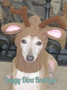 This is a reindeer snood/hoodie type hat for a small dog or cat. (Neck size no larger than 12). Looking for this hat in a larger size? Listing