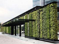 Jardines Verticales Park Plaza por Verde Vertical