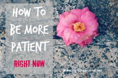 Need some patience - now? How to Be More Patient :: nurturedmamablog.net