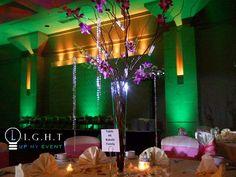 green Michigan wedding uplighting