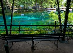 Yep, see how gorgeous this place is? San Marcos, texas   Aquarena Springs - San Marcos