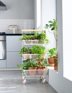 Drømmer du om en have, men bor i en lille lejlighed? Brug et rullebord til en fleksibel urtehave. @ IKEA