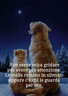 Italian Language, True Words, Animals And Pets, Karma, Quotations, Dog Cat, Best Friends, Inspirational Quotes, Thoughts