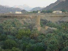 Wadi Al Hawsina -Oman