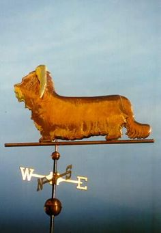 Skye Terrier Dog Standing by West Coast Weather Vanes.  Glass eye color can be selected to accommodate a  variety of dog eye colors.  Personalized dog weathervanes can feature gold-leafing to bring out your pet's distinctive markings, as well as dog collars bearing your dog's name.