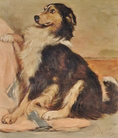 Original oil painting on board collie dog 20th century signed F M Hollams