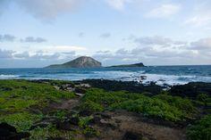 Top beaches in Oahu. The sunrise at Makapu'u is a wonder to behold.