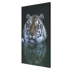 >>>Order          	Tiger in Water Stretched Canvas Print           	Tiger in Water Stretched Canvas Print This site is will advise you where to buyReview          	Tiger in Water Stretched Canvas Print Online Secure Check out Quick and Easy...Cleck Hot Deals >>> http://www.zazzle.com/tiger_in_water_stretched_canvas_print-192746706091251971?rf=238627982471231924&zbar=1&tc=terrest