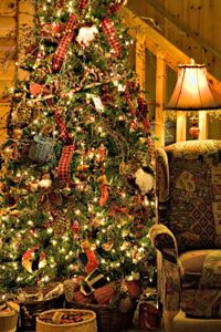 Google Image Result for http://files.idealhomegarden.com/files/commons/rustic_christmas_decoration_design_photos.jpg
