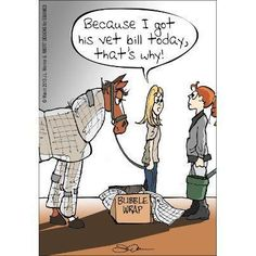 Bubble wrap your horse... cuts down on vet bills. :) #Equine #pets #veterinarian #humor Cartoon by JL Werner