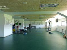 Imágenes de la ciudad deportiva del Real Betis Balompié finalizadas Buildings, Basketball Court, Public, Cities, Sports, Architecture, Interiors