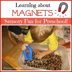 Learning about Magnets – for preschoolers (sensory fun for the letter M) from The Measured Mom