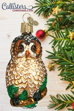 The spotted owl is an endangered species that lives in old-growth forests of western North America. They have become a powerful symbol for promoting environmental awareness and have been championed by those trying to save ancient forests and the wildlife living within them. Pay them tribute with this shining spotted owl ornament! Old World Christmas Ornaments, Christmas Gift Box, Christmas Ideas, Christmas Decorations, Christmas Tree, Holiday Decor, Owl Ornament, Ornament Hooks, Glass Ornaments