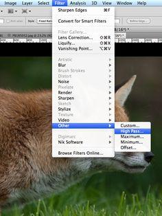 Digital Photography School: Sharpening in Photoshop