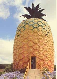 Port Alfred The Big Pineapple in Bathurst – wanaabeehere Larry The Lobster, Pineapple Farm, Seaside Holidays, Old Pub, Unusual Buildings, Game Reserve, Seaside Towns, Sunshine Coast, East London