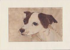 Cani in Cornice:  Cani in Cornice con Sophie e Roki vi augurano Buo...